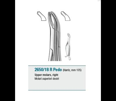 Pedodontic Tooth Forceps American Pattern Upper Molars