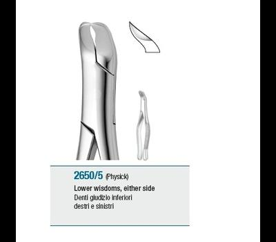 Tooth Forceps American Pattern Lower Wisdoms either side